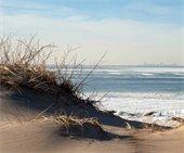 Dunes Shore
